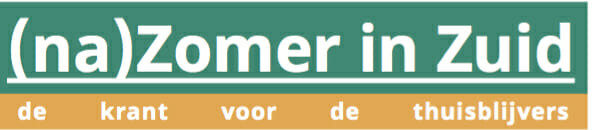 nazomerinzuid logo