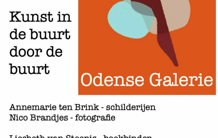 Odense Galerie 10 juli